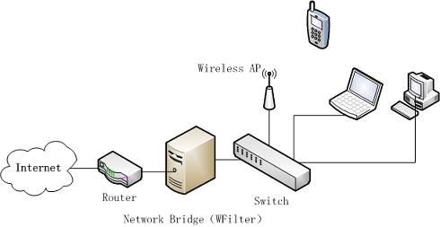 passthrough_bridge_topology.png